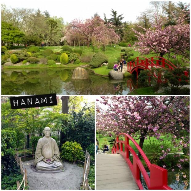 jardin_japonais_toulouse
