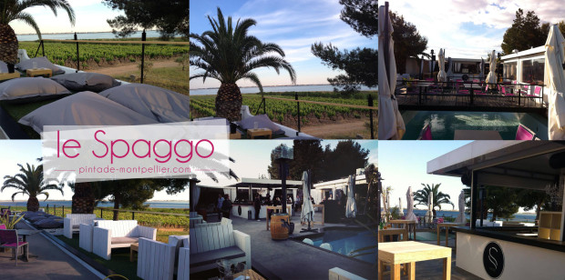 spaggo-restaurant-terrasse