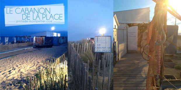 le cabanon de la plage plage priv e sete 34 une pintade montpellier. Black Bedroom Furniture Sets. Home Design Ideas