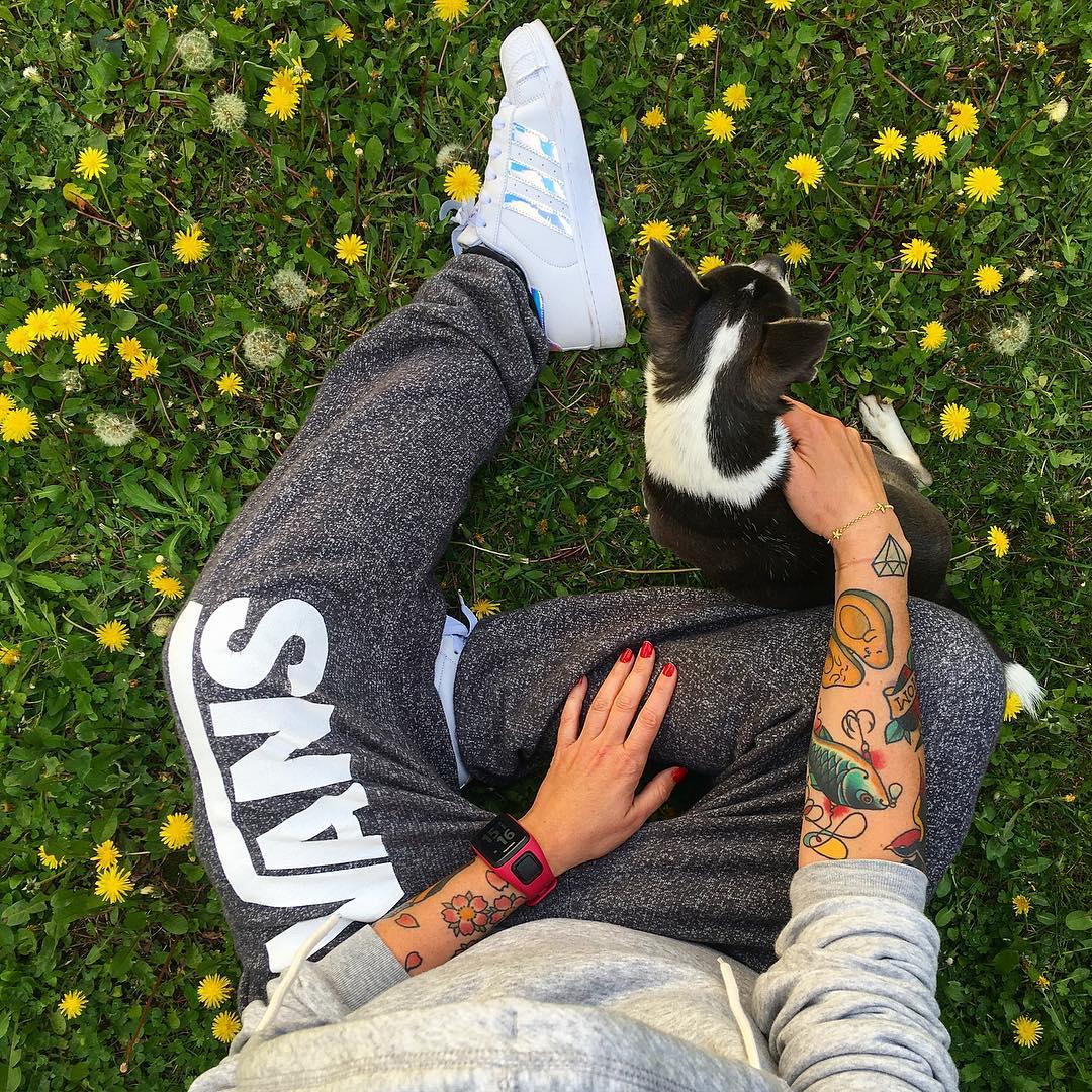 PIK NIK FAMILY ? #DimancheEnJogging _____________ #piquenique #family #love #montpellier #ballade #sport #vans #adidas #dog #attilalechihuahua #attilachihuahua #pintademontpellier