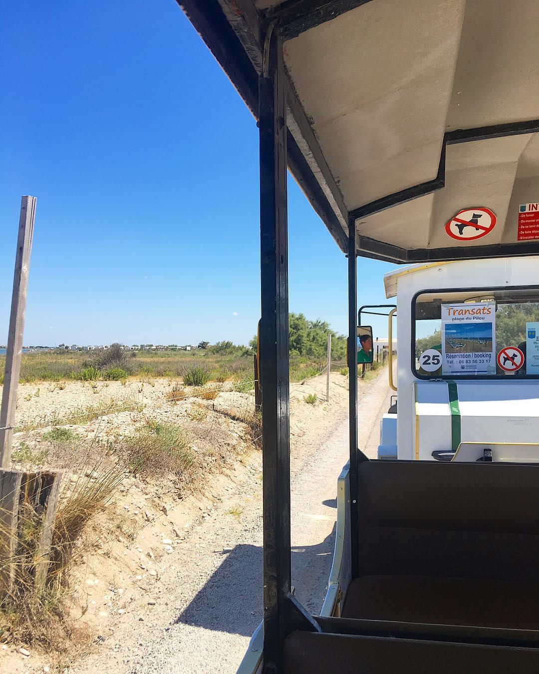 Un de mes moments préférés pour aller à la plage... le petit train ? de Maguelone ❤️ .  ______________ #summer #summertime #villeneuvelèsmaguelone #palavas #travel #travelblogger #montpellier #pintademontpellier #voyage #blogvoyage #travelblog