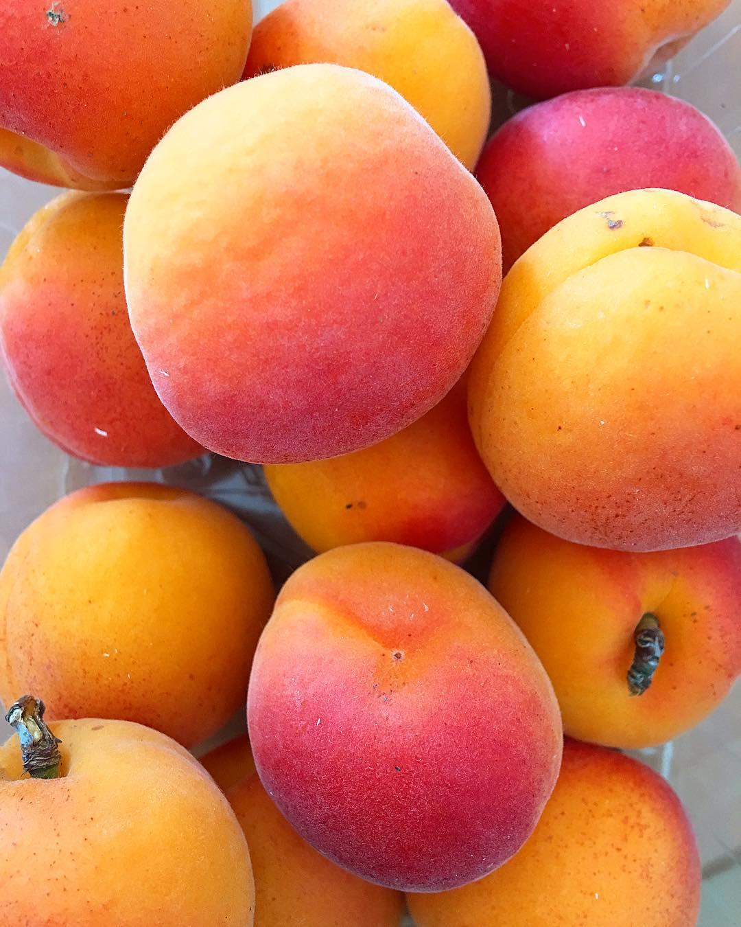 Pour le goûter, j'ai pensé à toi ✌???? .  ____________ #food #abricot #Roussillon #blogfood #foodlover #montpellier #pintademontpellier