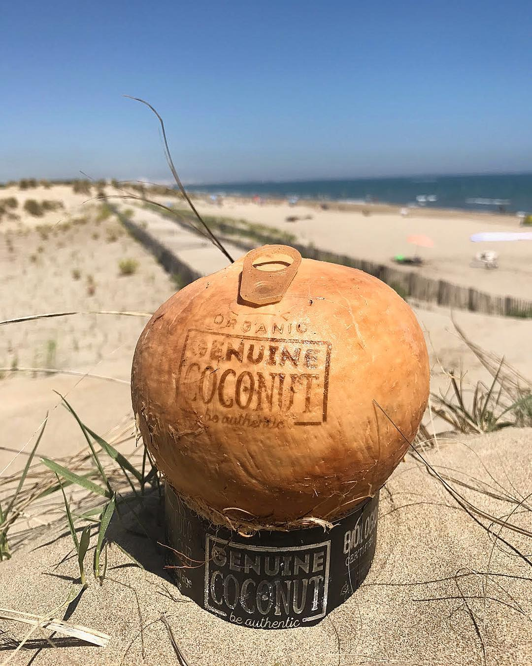 Petit rituel après le Sport : eau de coco ?Merci @genuinecoconutmontpellier pour le ravitaillement ? . . ➕ GENUINE COCONUT • coconut vierge eau et fruit . ??‍? Article sur le blog {lien dans ma bio} . _________________  #genuine #genuinecoconut #coconut #genuinecoconutmtp #coconutwater #foodlover #blogfood #foodporn #food #foodphotography #gastronomy #pintadesport #healthy #healthyfood #healthylife #pintademontpellier #blogsport #workout #fitness #running