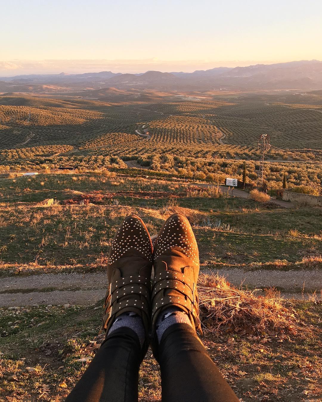 Je veux vivre en OLIVIE ! . . . . ➕ Castillo de Canena • Producteur d'huiles d'olive ? Ubeda • Spain ?? . ? 6 jours en ANDALOUSIE . ?? tout suivre sur #PintadeEspagne .  ________________  #andaluciatasteslike #andalousie #spain #espagne #andalucia #tourismo #gastronomie #food #blogfood #foodblogger #tourisme #travel #travelblog #blogtravel #trip #citytrip #pintademontpellier #blogvoyage #travelgram #travellover #cityguide #visitspain #almeria #jaen #granada #malaga #castillodecanena