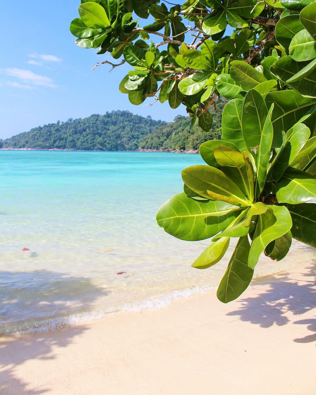 C'est totalement ouffff les couleurs ici !! Même les cartes postales ne sont pas représentatives de la beauté de ces paysages . ⛴______ ➕ l  Les îles SURIN . ? | Khao Lak • Côte Ouest Thaïlande . ? | #PintadeThailande ? | Thaïlande Nord & Côte Ouest ??? ______ #thailande #thailand #bangkok #kohphiphi#kohlanta #kohsamui #kohphangan #kohtao #khaolak #chiangmai #cityguide #cityTrip #travel #blogTravel #TravelBlog #bloggervoyage #voYage #blogVoyage #frenchBlogger #blogueuse #blog #montpellier #pintademontpellier #food #foodlover