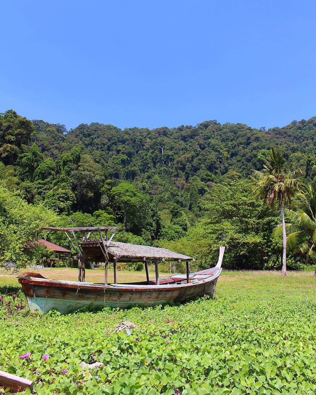 Entre terre et mer ????♀️????? . ??♀️ Le parc national maritime de Surin (Ko Mu Surin) est composé de 5 îles dont 2 grandes îles distantes d'une centaine de mètres. . ??♀️ Le site est exceptionnellement calme et reste naturel car les visites de l'archipel sont restreintes et contrôlées. Aucune construction n'y est autorisée ! . ??♀️ Les seuls habitants à Surin Tai sont les Mokens (quelques peu méprisés par les autorités), ils sont pauvres et subsistent grâce aux produits de la mer. Koh Surin Nua est la plus grande (5 km). . ??♀️ Ces îles uniques sont composées de la plus grande et la plus fertile barrière de corail de la Thailande. Les fonds peu profonds (25 à 30 m) sont d'une grande richesse et représentent un des plus beaux sites de plongée au monde. . ⛴______ ➕ l  Les îles SURIN . ? | Khao Lak • Côte Ouest Thaïlande . ? | #PintadeThailande ? | Thaïlande Nord & Côte Ouest ??? ______ #thailande #thailand #bangkok #kohphiphi#kohlanta #kohsamui #kohphangan #kohtao #khaolak #chiangmai #cityguide #cityTrip #travel #blogTravel #TravelBlog #bloggervoyage #voYage #blogVoyage #frenchBlogger #blogueuse #blog #montpellier #pintademontpellier #food #foodlover